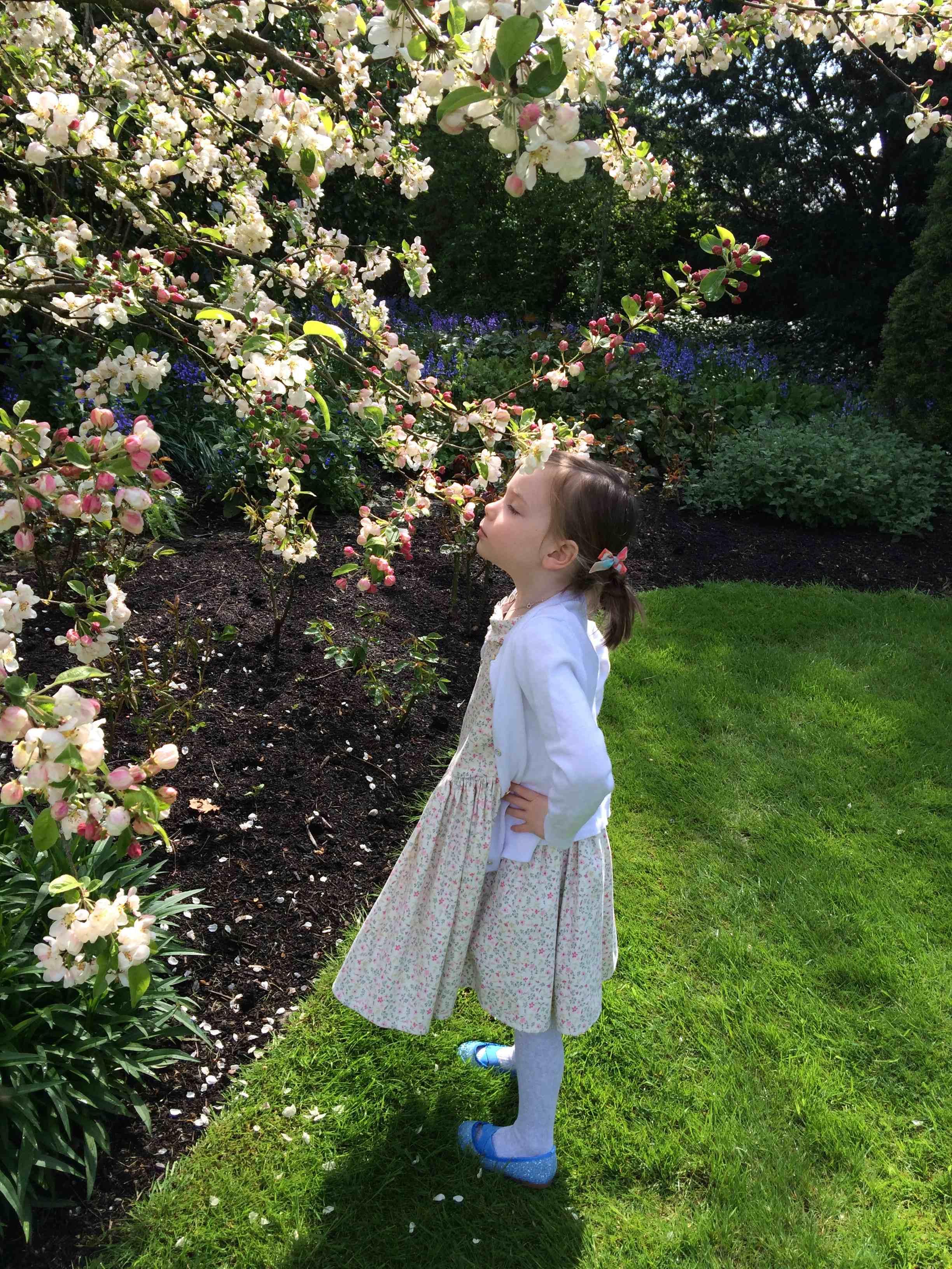 smelling-the-flowers-in-ireland.jpg