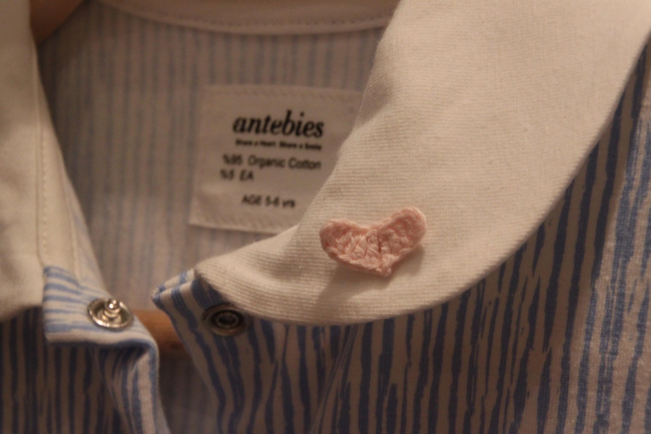 Antebies-2.jpg