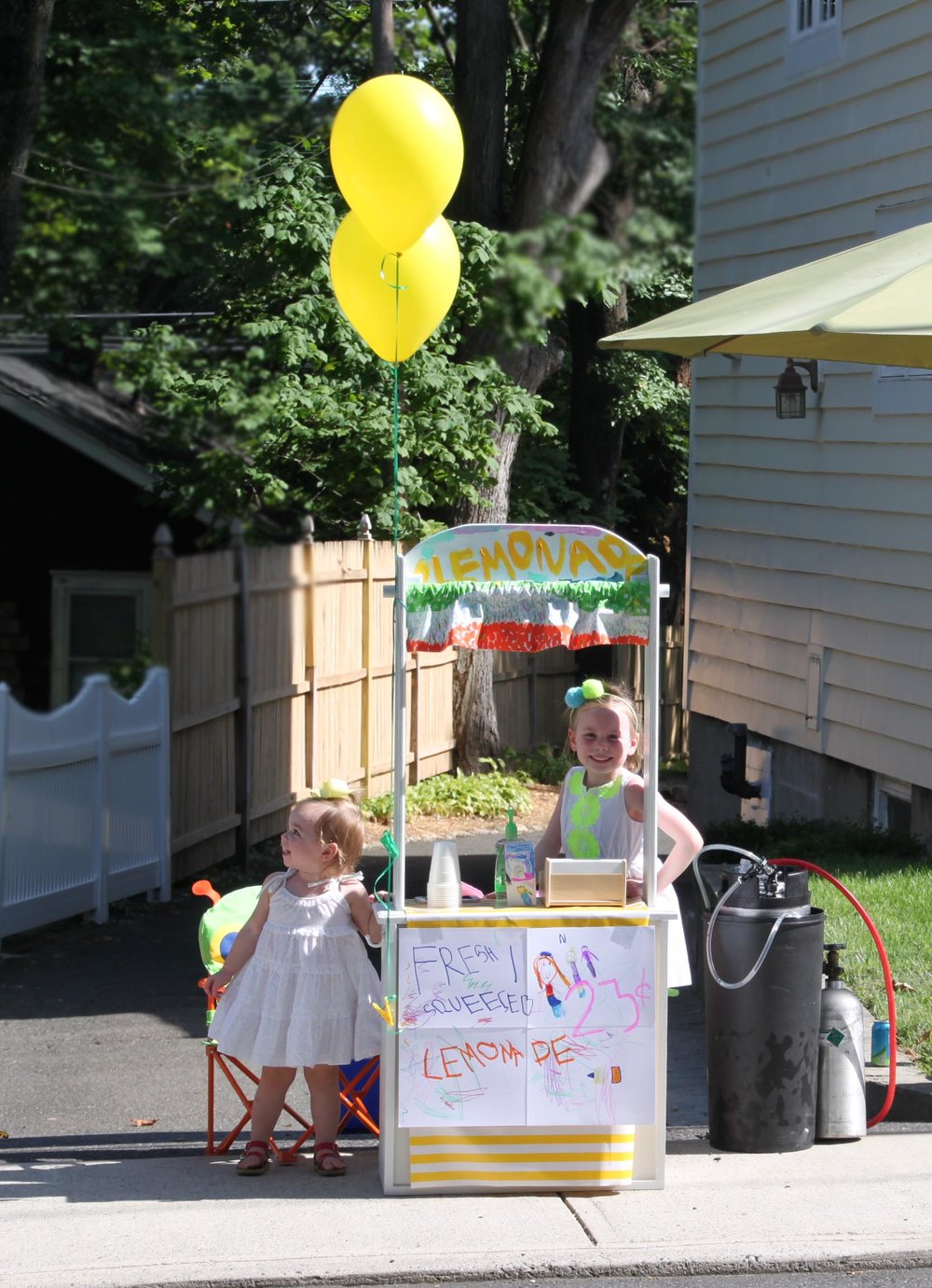 Lemonade Stand Pic.jpg