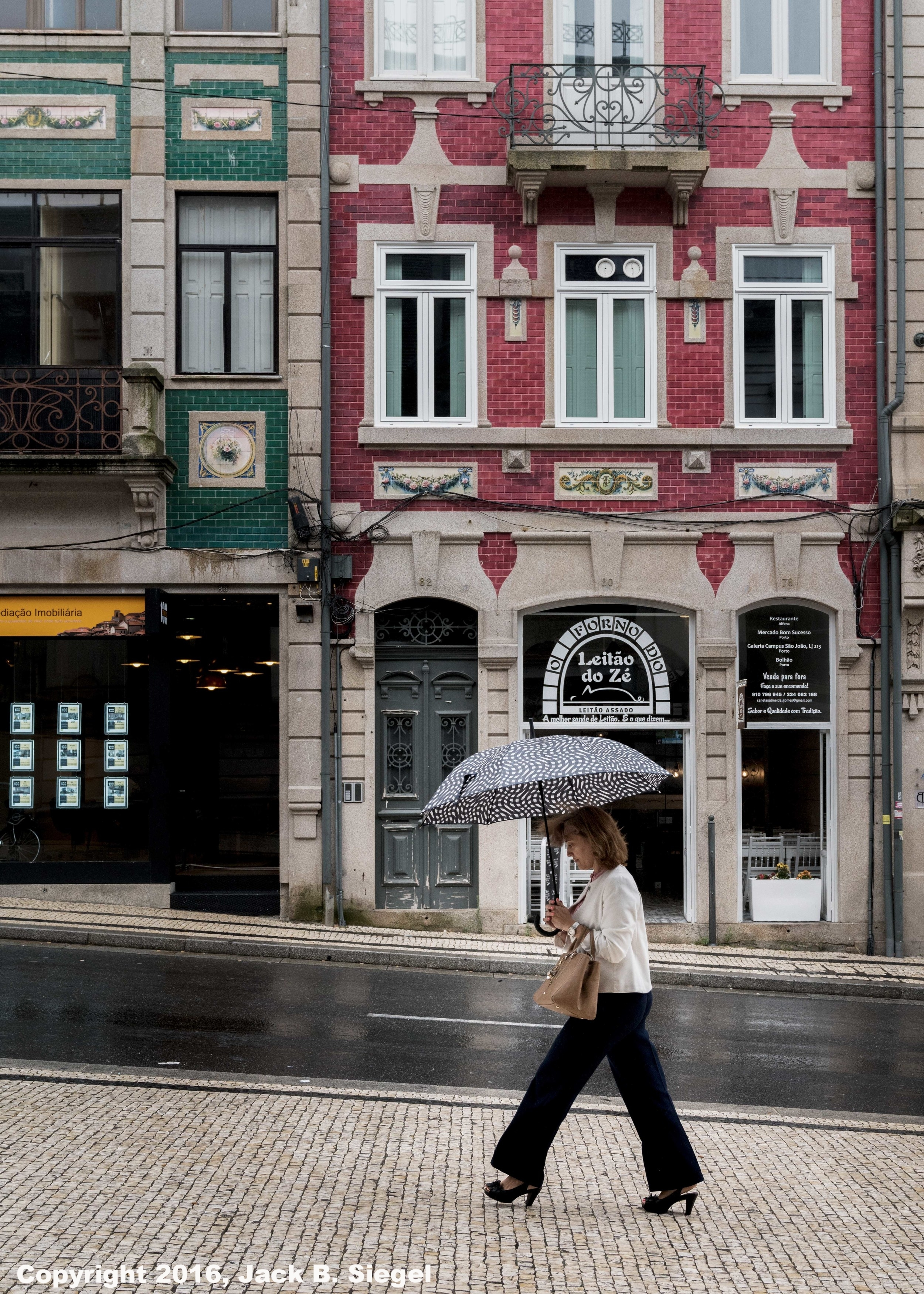DSC04127_sRGB_COElegant Woman Walking in the Rain.jpg