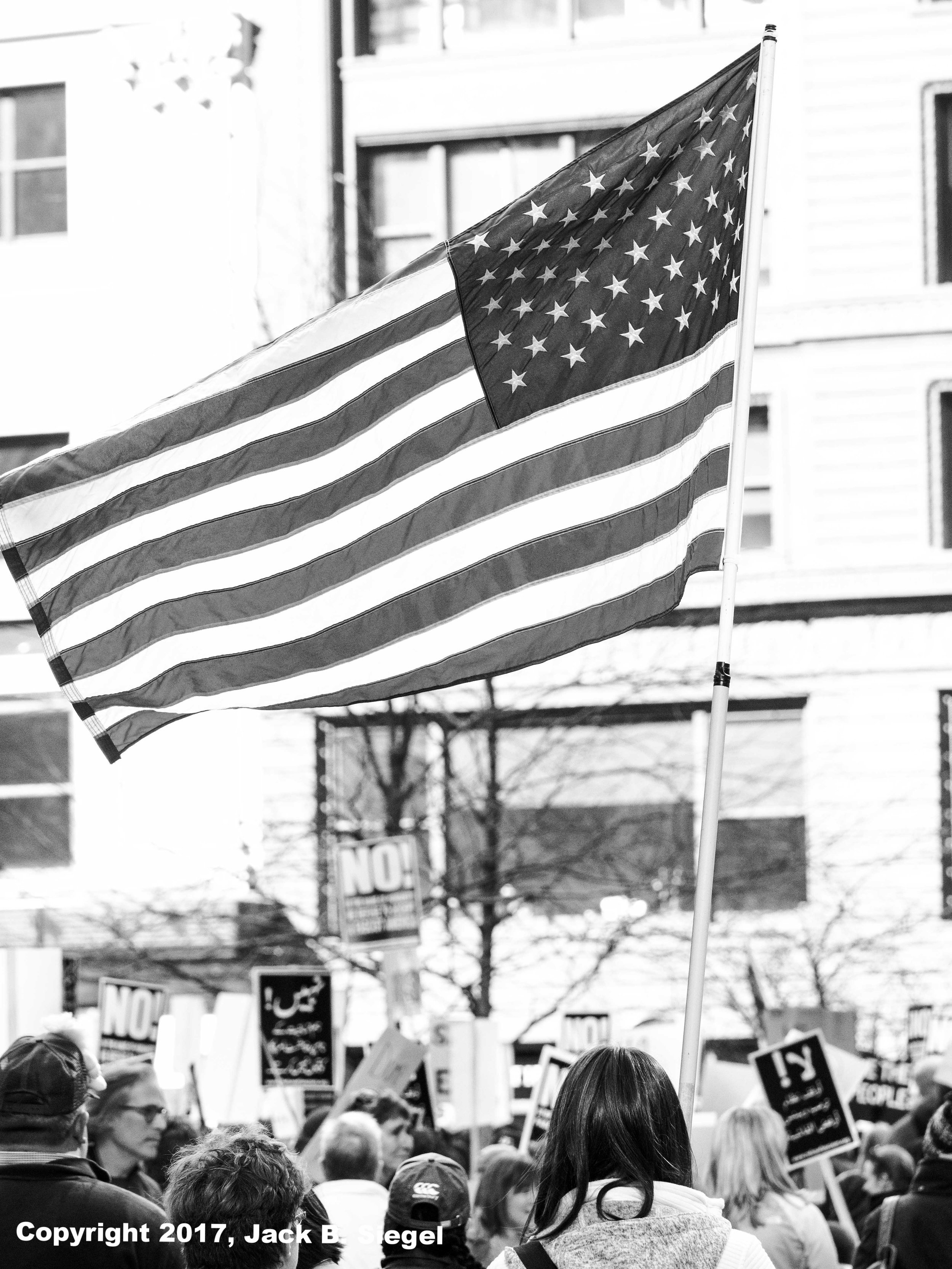 Patriotic Opposition: Hold That Flag High