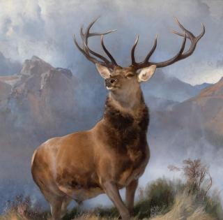 Monarch of the Glen  by Sir Edwin Landseer (1851)