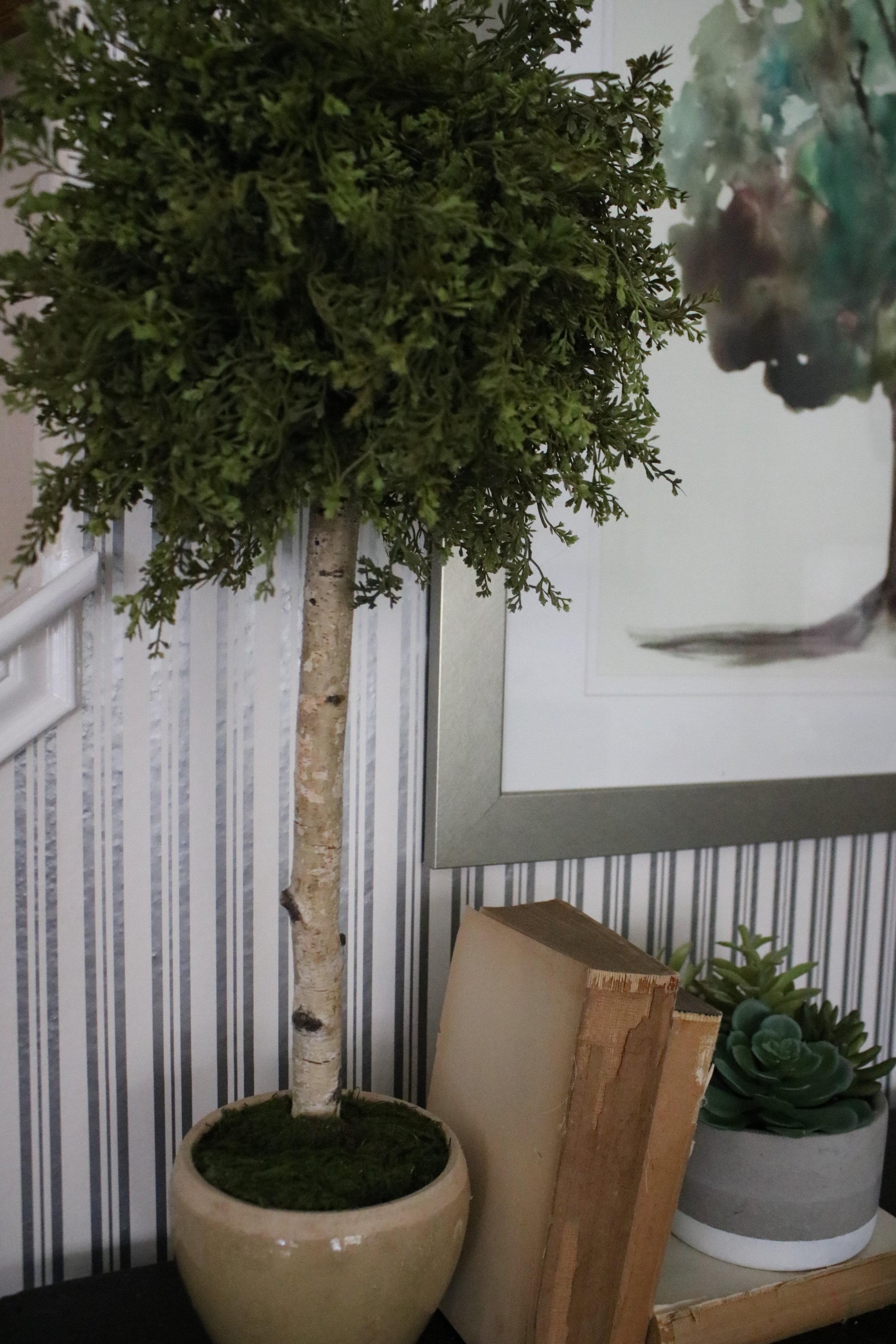 DIY topiary top.JPG