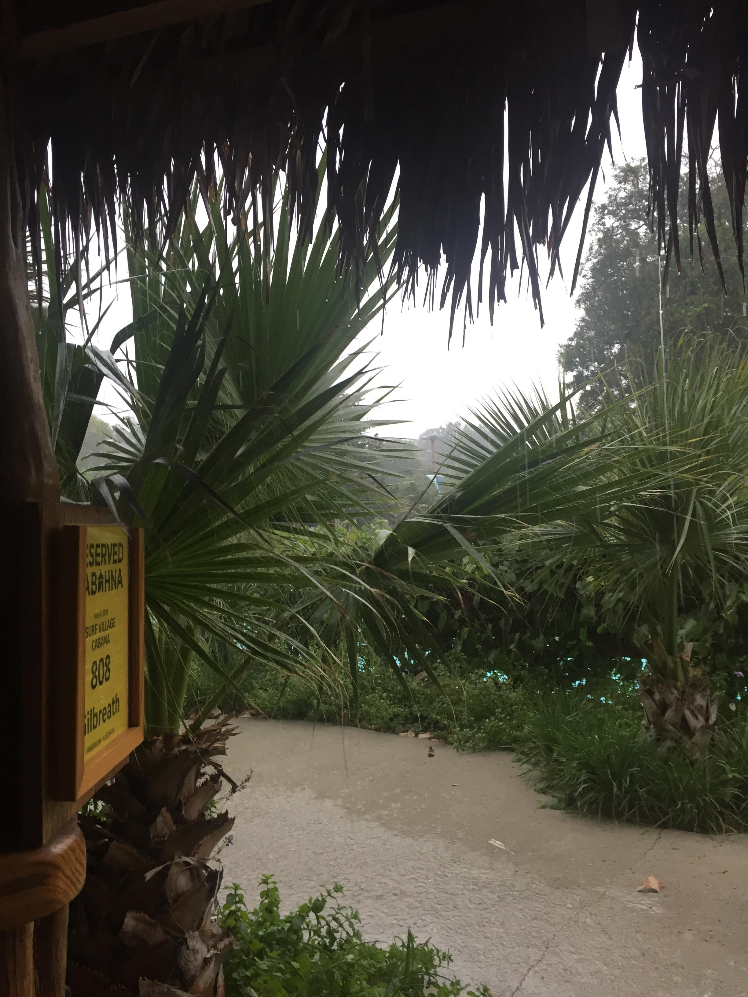 rainy view from cabana.JPG