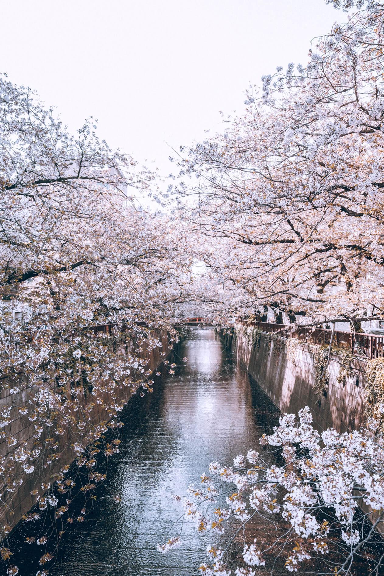 Japan-78.jpg