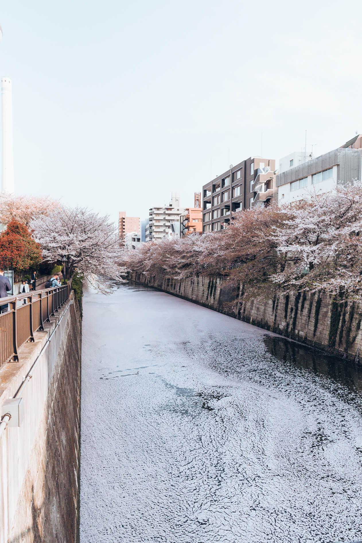 Japan-83.jpg