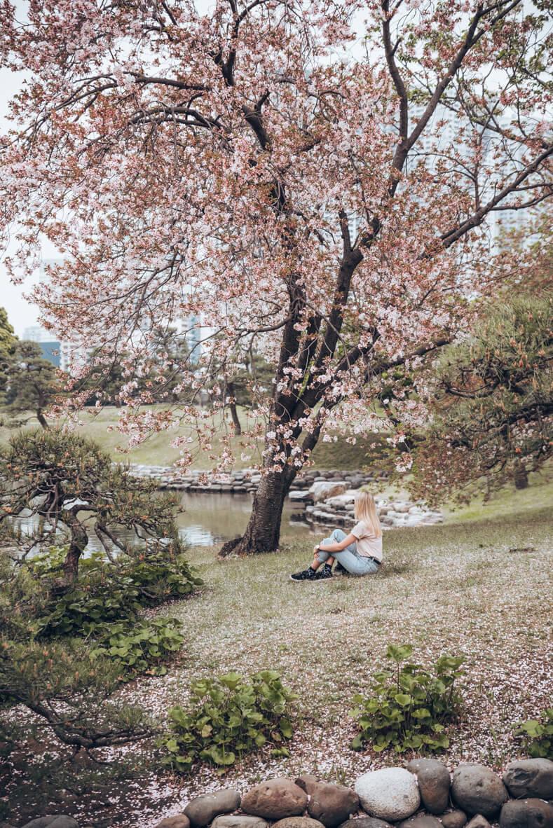 Japan-237.jpg