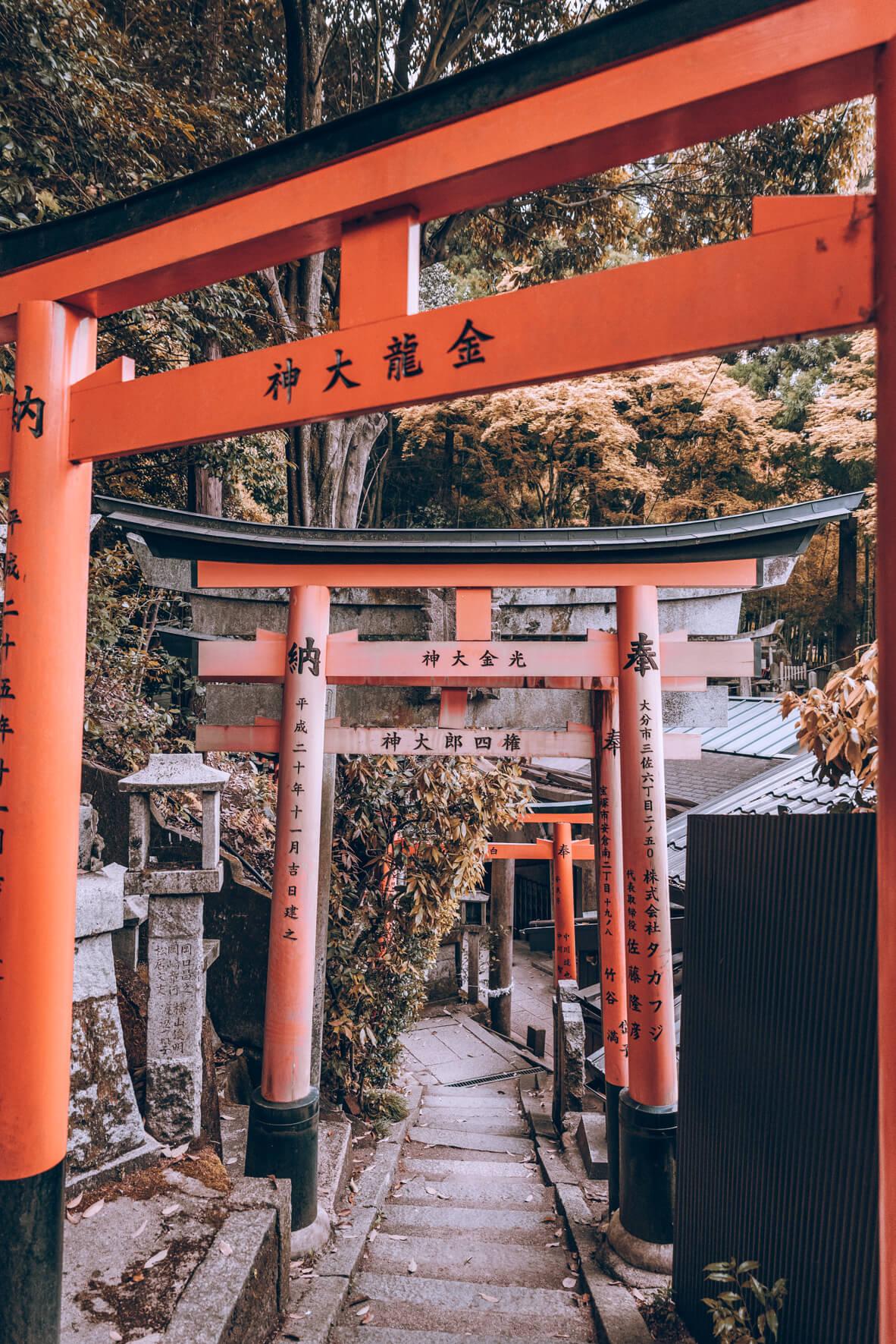 Japan-430.jpg