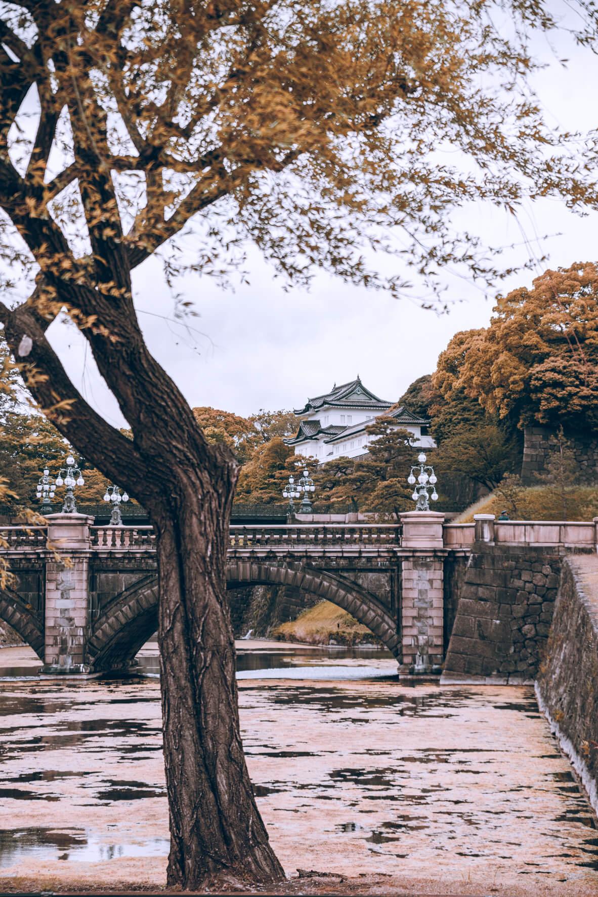 Japan-525.jpg