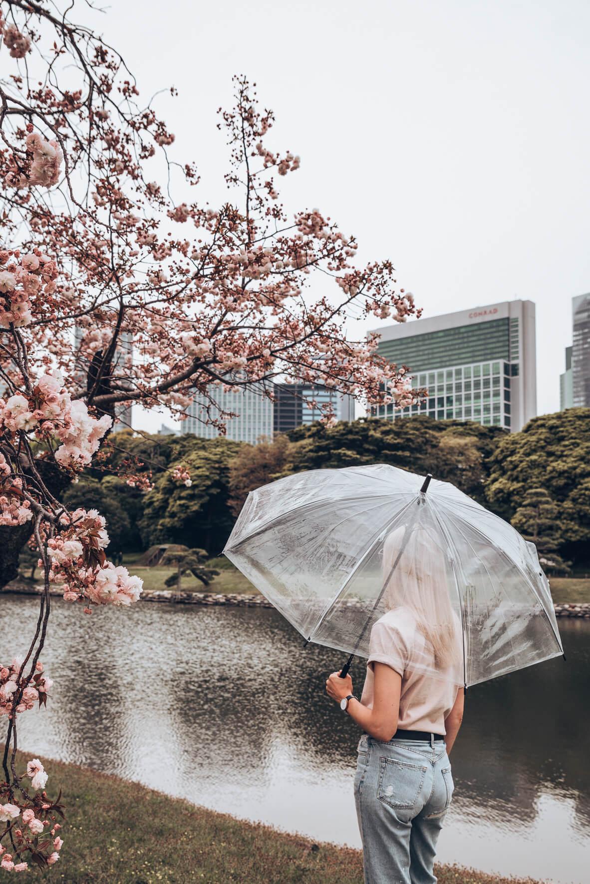 Japan-704.jpg