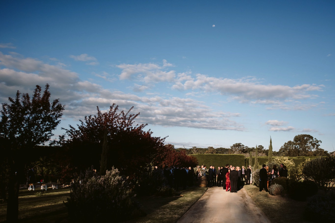 Coombe Yarra Valley Wedding Photography-103.jpg