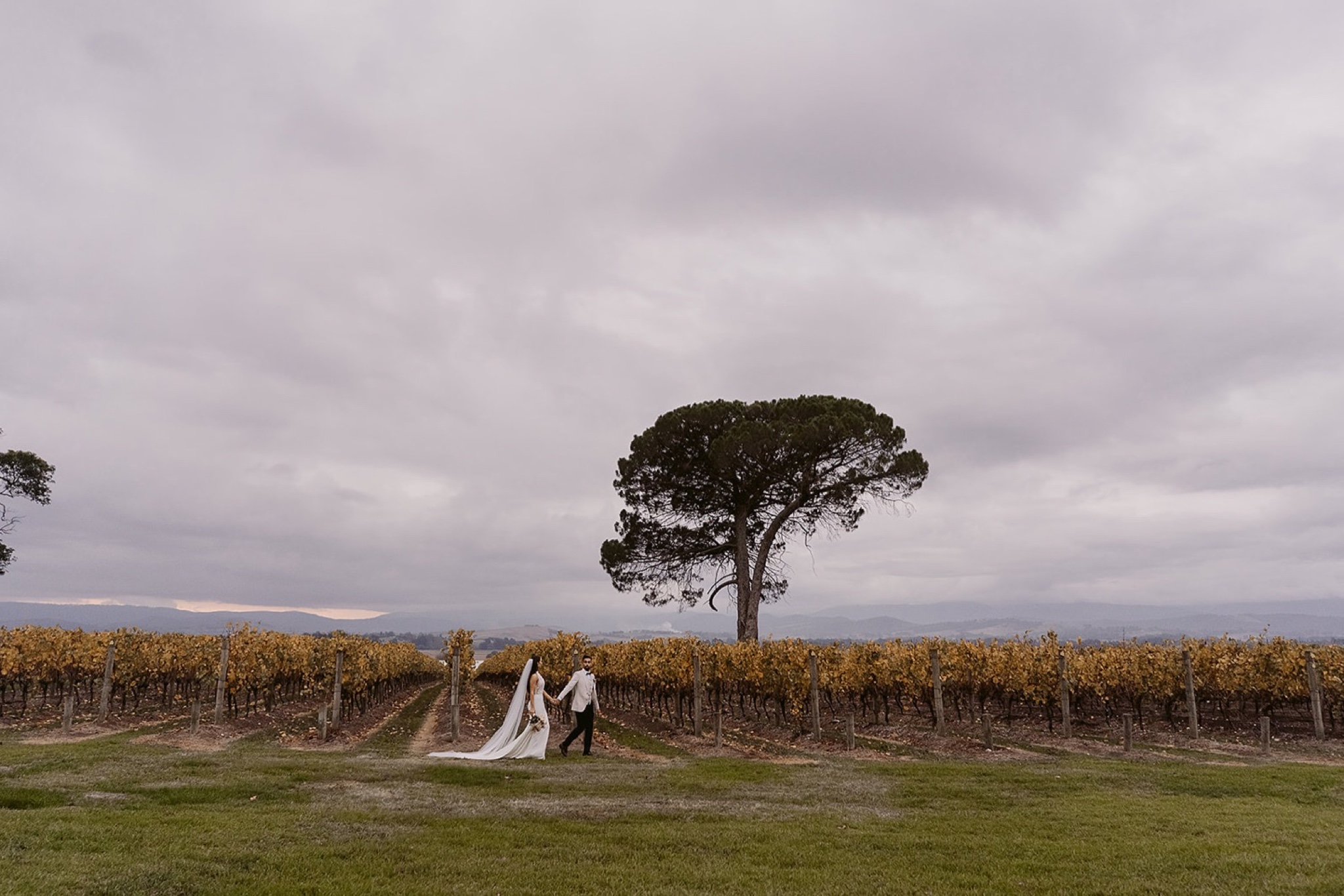 Stones of the Yarra Valley wedding photographer Ashleigh haase99.jpg
