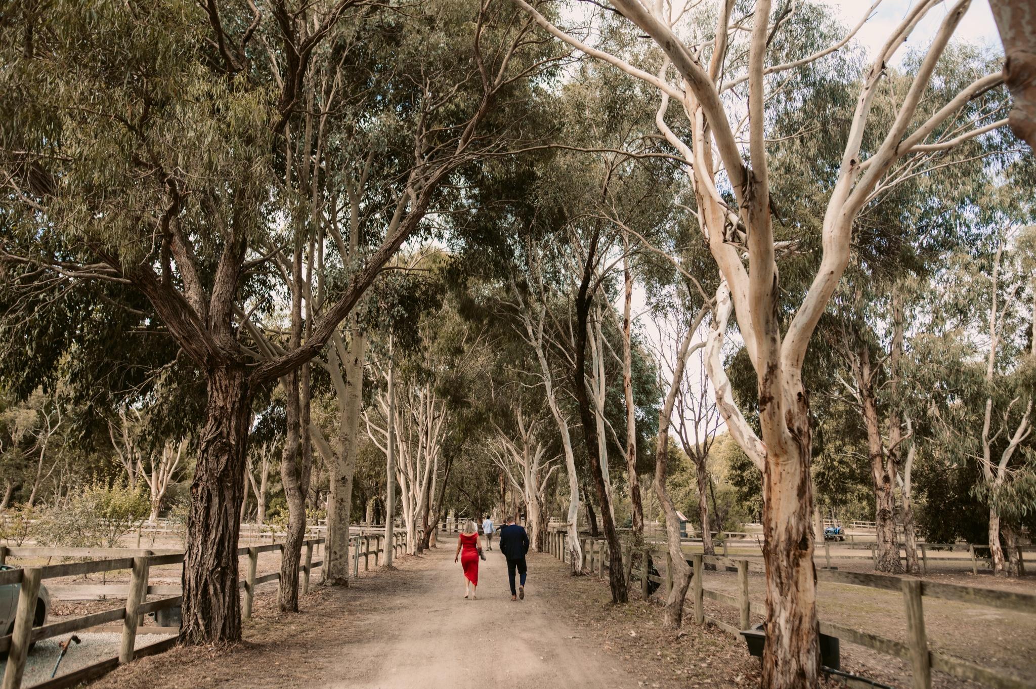 Mornington Peninsula Wedding Photography33.jpg