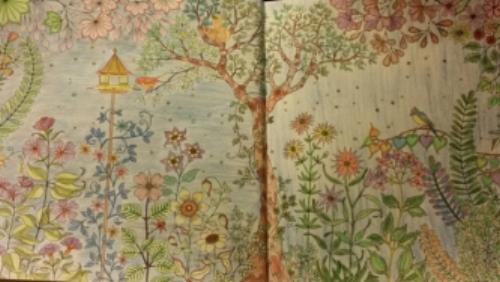 jardin secreto coloreado.jpg