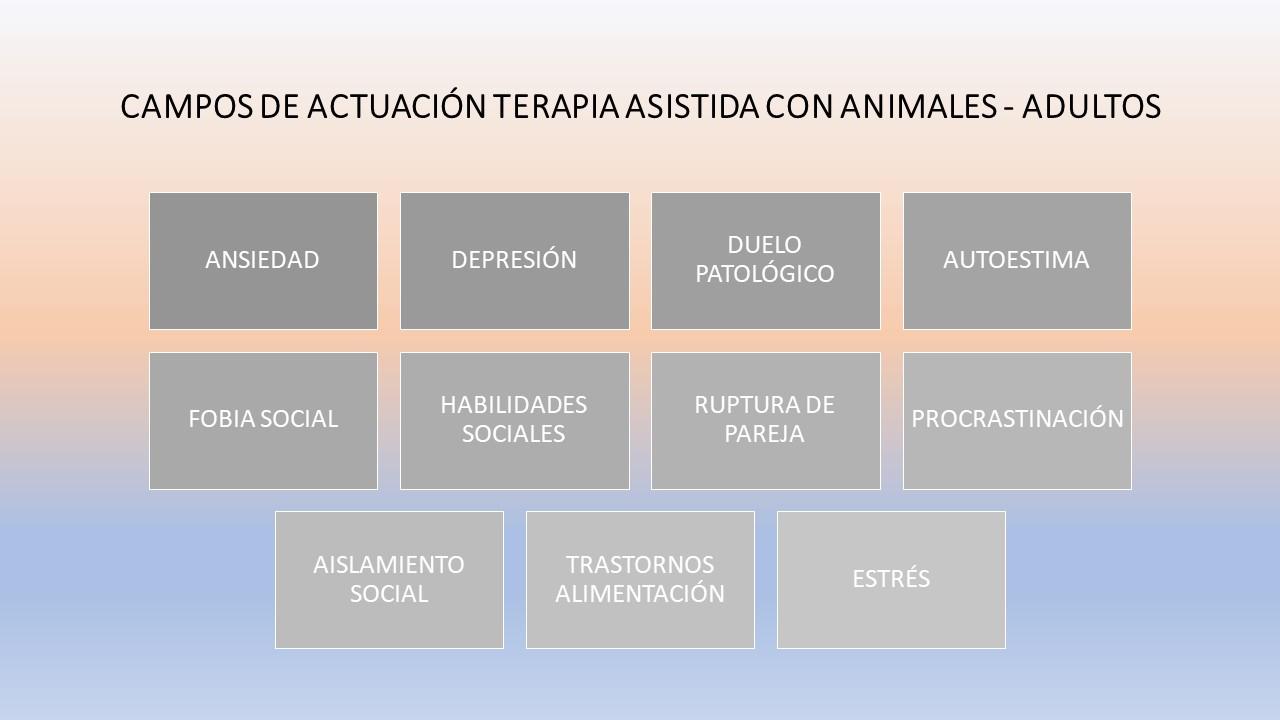 CAMPOS ACTUACIÓN TERAPIA ADULTOS CON PERROS.jpg