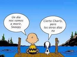 charly.jpg