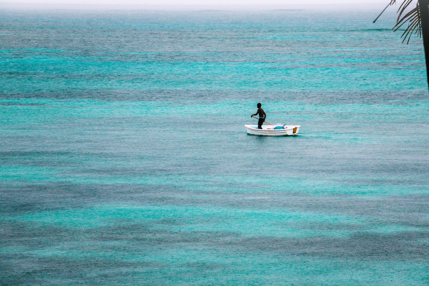 LAB Fiji-3.jpg
