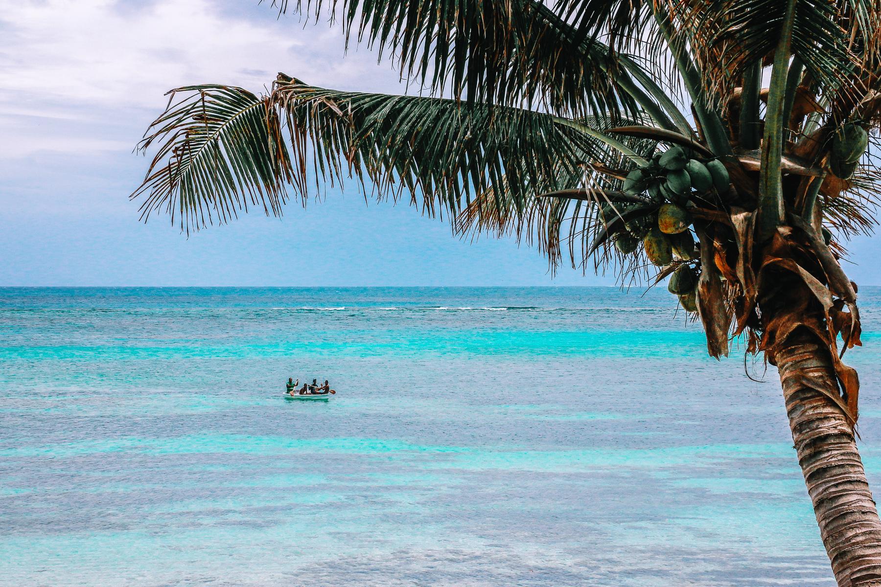 LAB Fiji-4.jpg