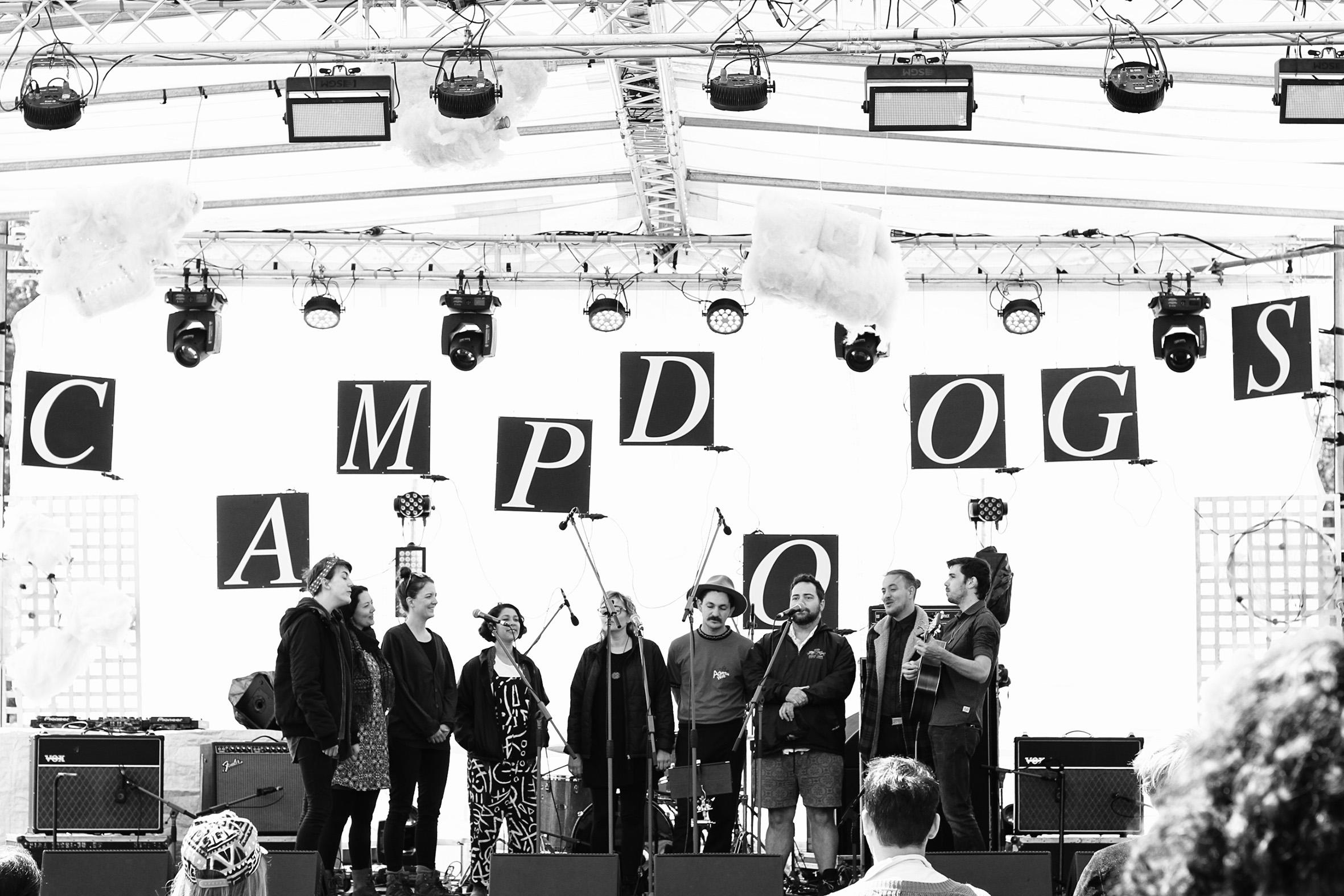 CampDoogs_Amber_012.JPG