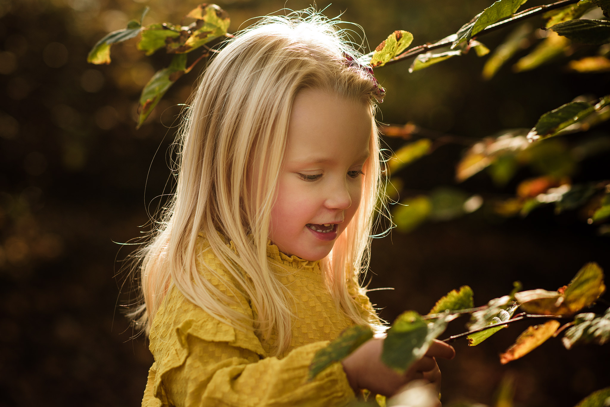 Little girl dressed in yellow looking at a branch with golden sunlight hitting the back of her head | Children's Photographer Aylesbury Buckinghamshire and Thame Oxfordshire