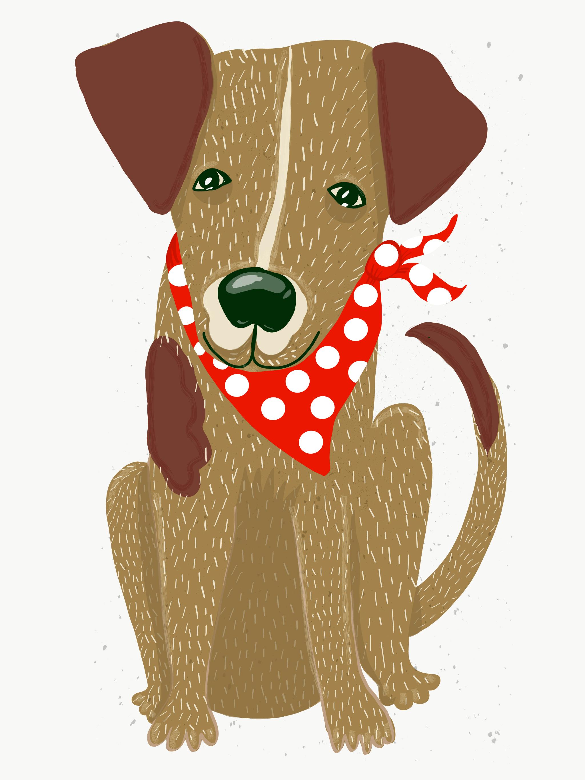 DOG-CYRIL.jpg