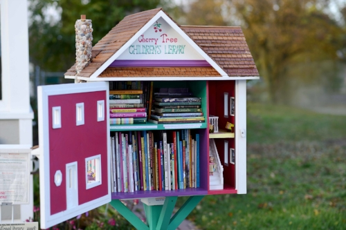 Photo courtesy of Little Free Library
