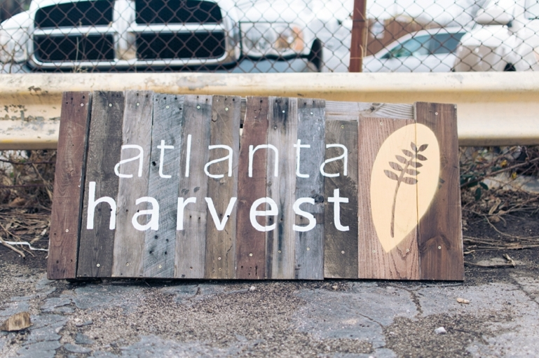 Atlanta Harvest 2015 / Photo by  Holly Von Lanken