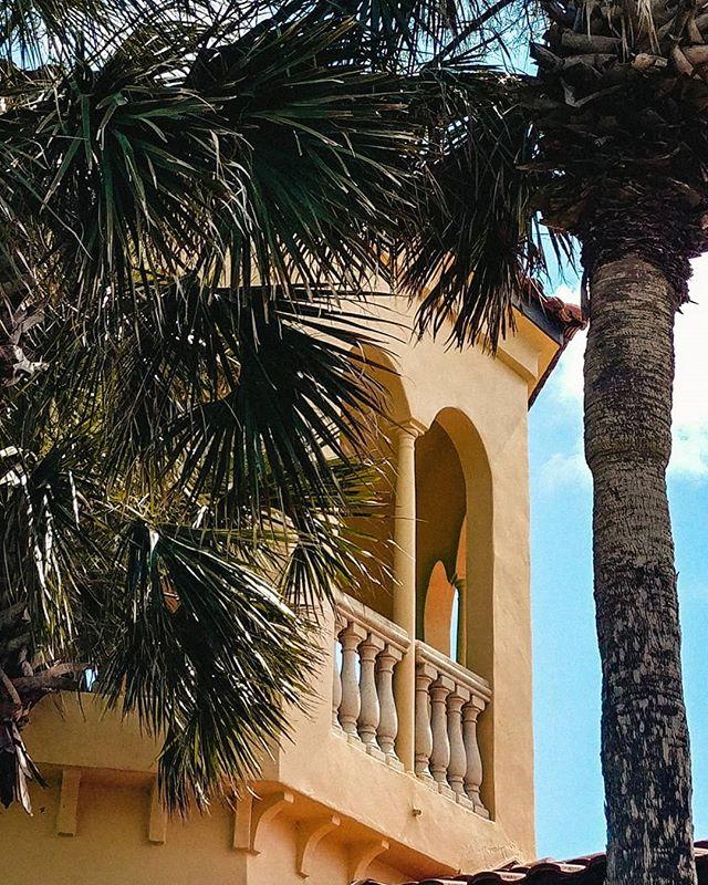 Another Florida pic- - - - - #justgoshoot #stunnersoninsta #photography #photooftheday #travel #palmtrees