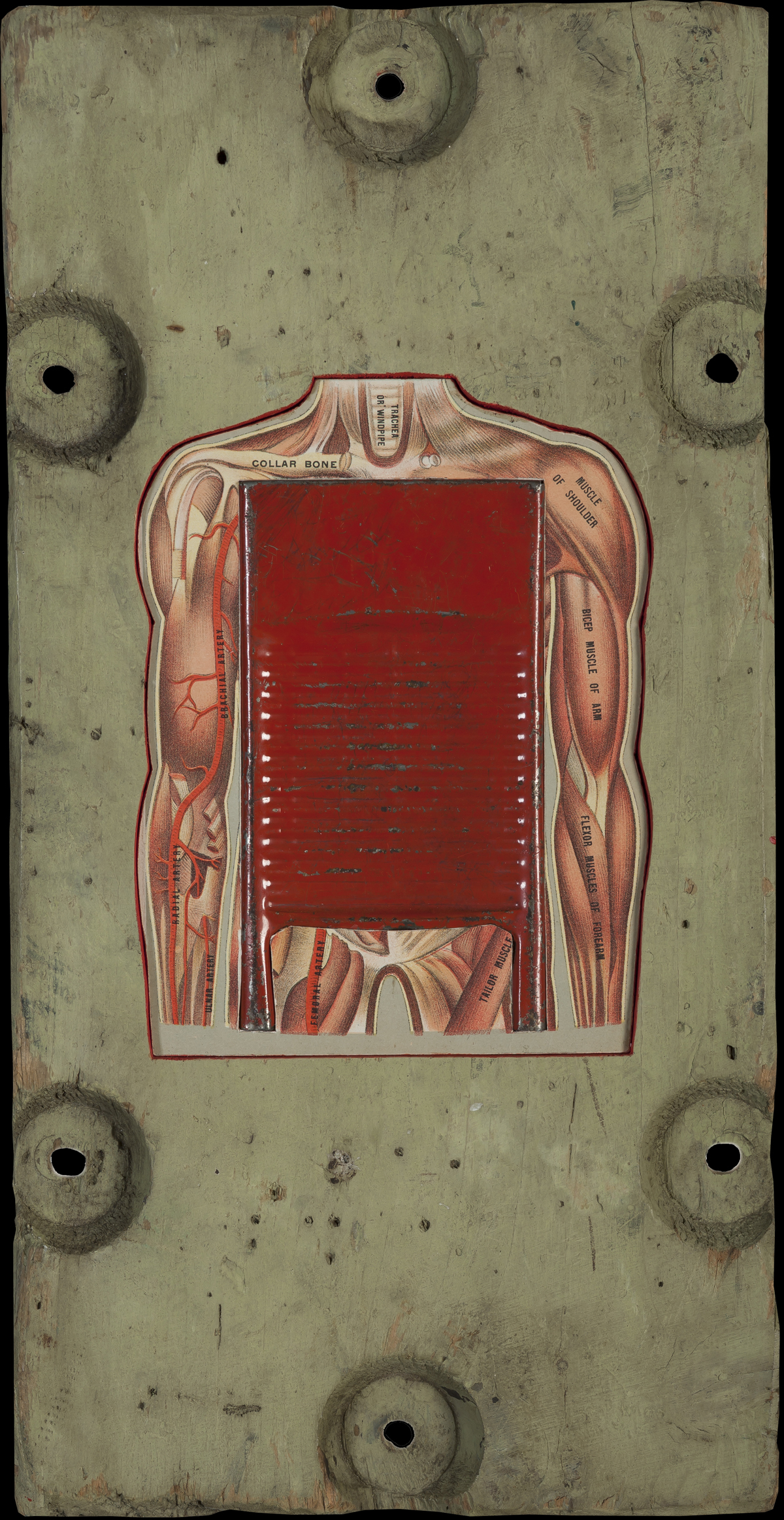 Washboard Abs, 2014, 18 x 9 (Sold)