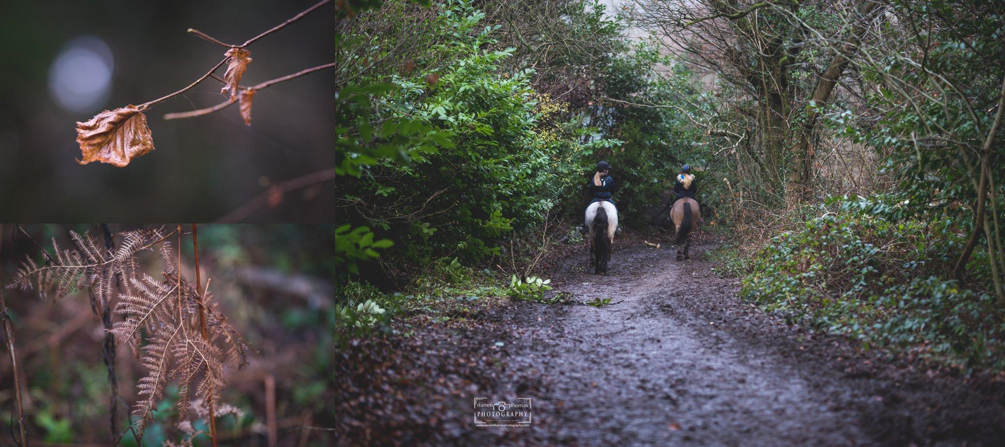 forest walk_0013.jpg