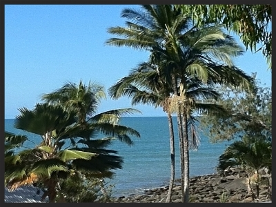 Coral Sea View King Deluxe Beach View
