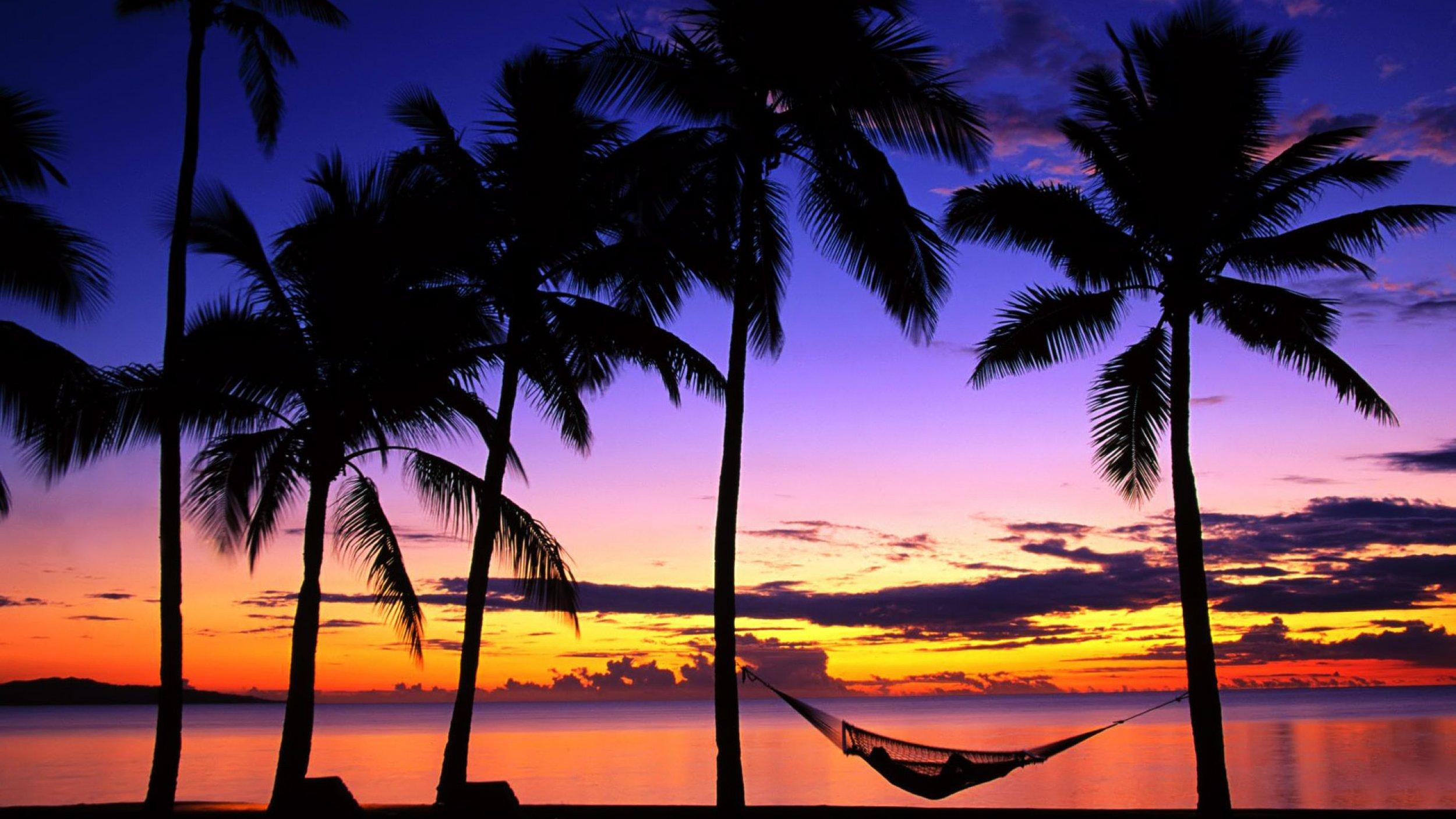 6969950-tropical-sunset.jpg