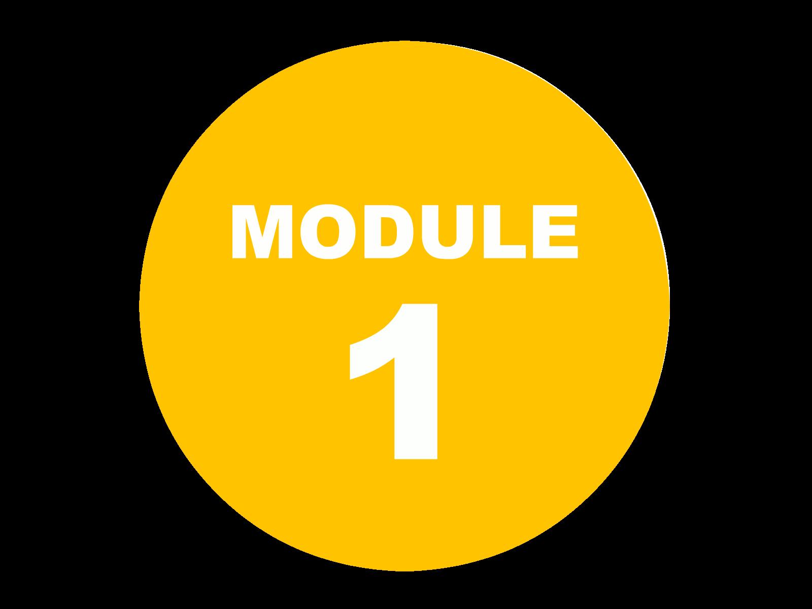 module 1.png