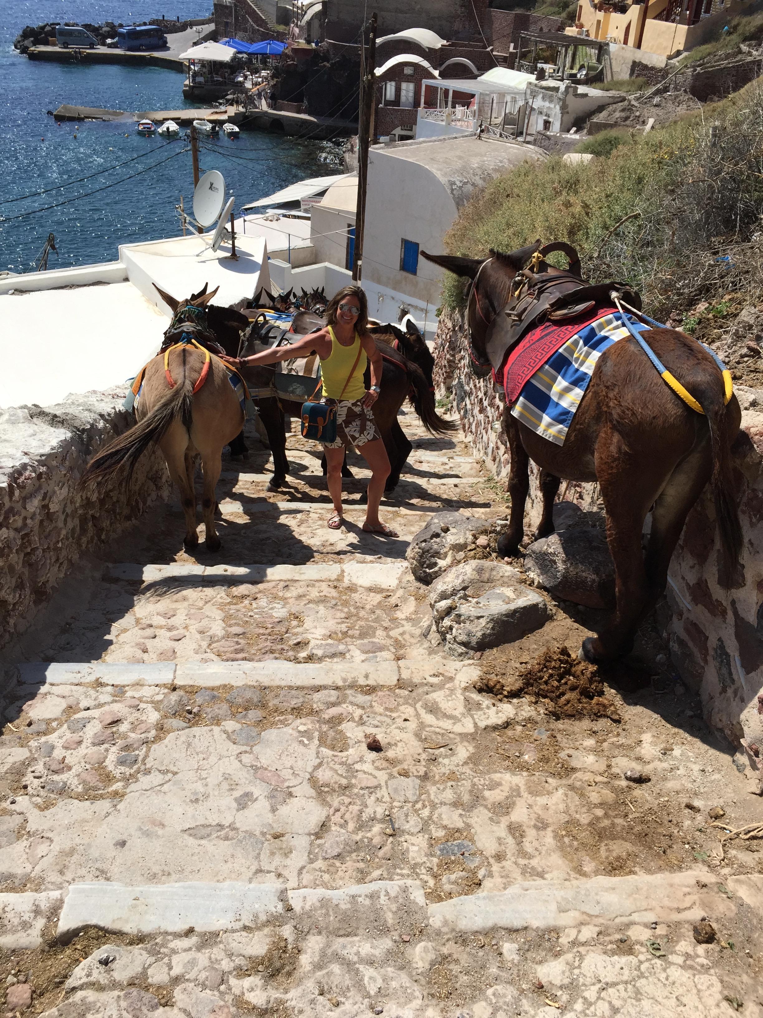 Santorini Donkey Trail