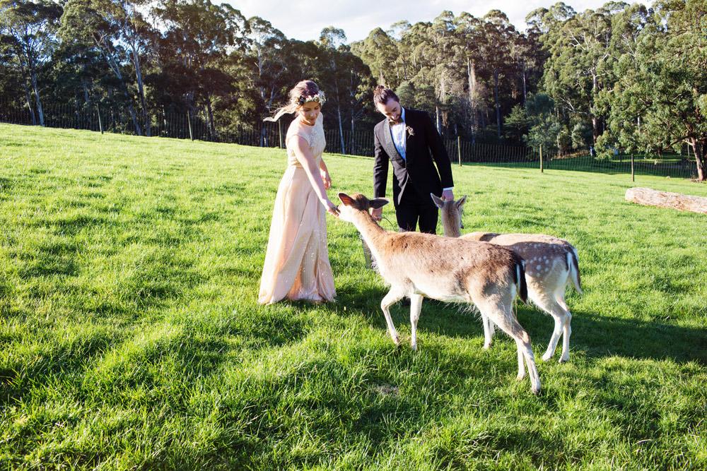 095 Gum Gully Farm wedding.jpg