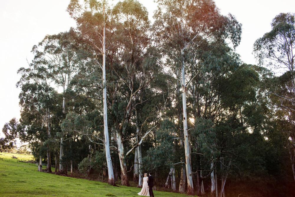 102 Gum Gully Farm wedding.jpg