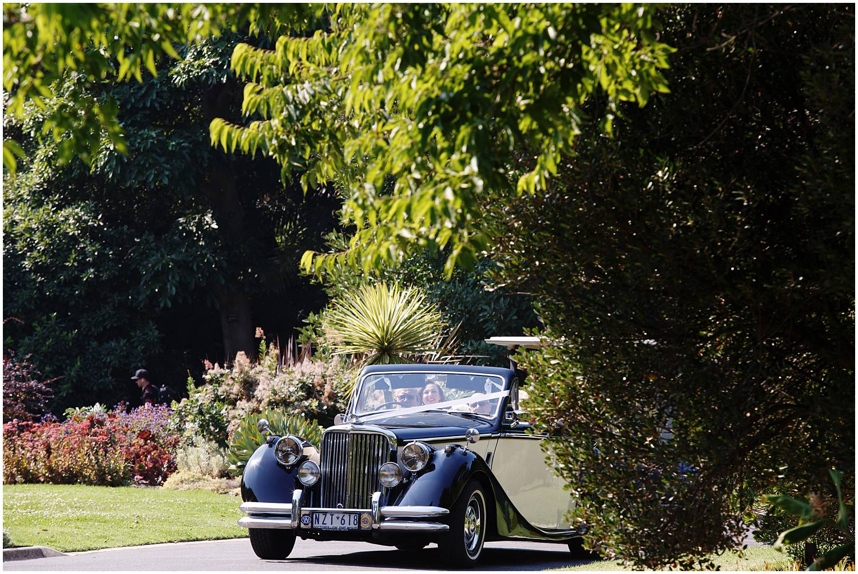NGV botanical gardens wedding melbourne 033.jpg