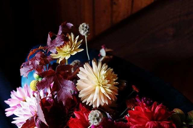 Missy's autumn inspired bouquet couldn't be anymore perfect if it tried! #portraitcollective #pusuitofportraits #colourfulwedding #autumnbride #weddingmemories #australianweddings #feelgoodweddings #dandenongrangeswedding #realwedding #lookslikefilmweddings #photobogcommunity #yarravalleywedding #bouquetideas #weddinggoals #elopementlove #huffpostweddings #funwedding #allforlove #gowngoals #quirkywedding #funbride #weddingfirstlook #firstlook ##weddingflowersinspo #bridalbouquetmelbourne⁣