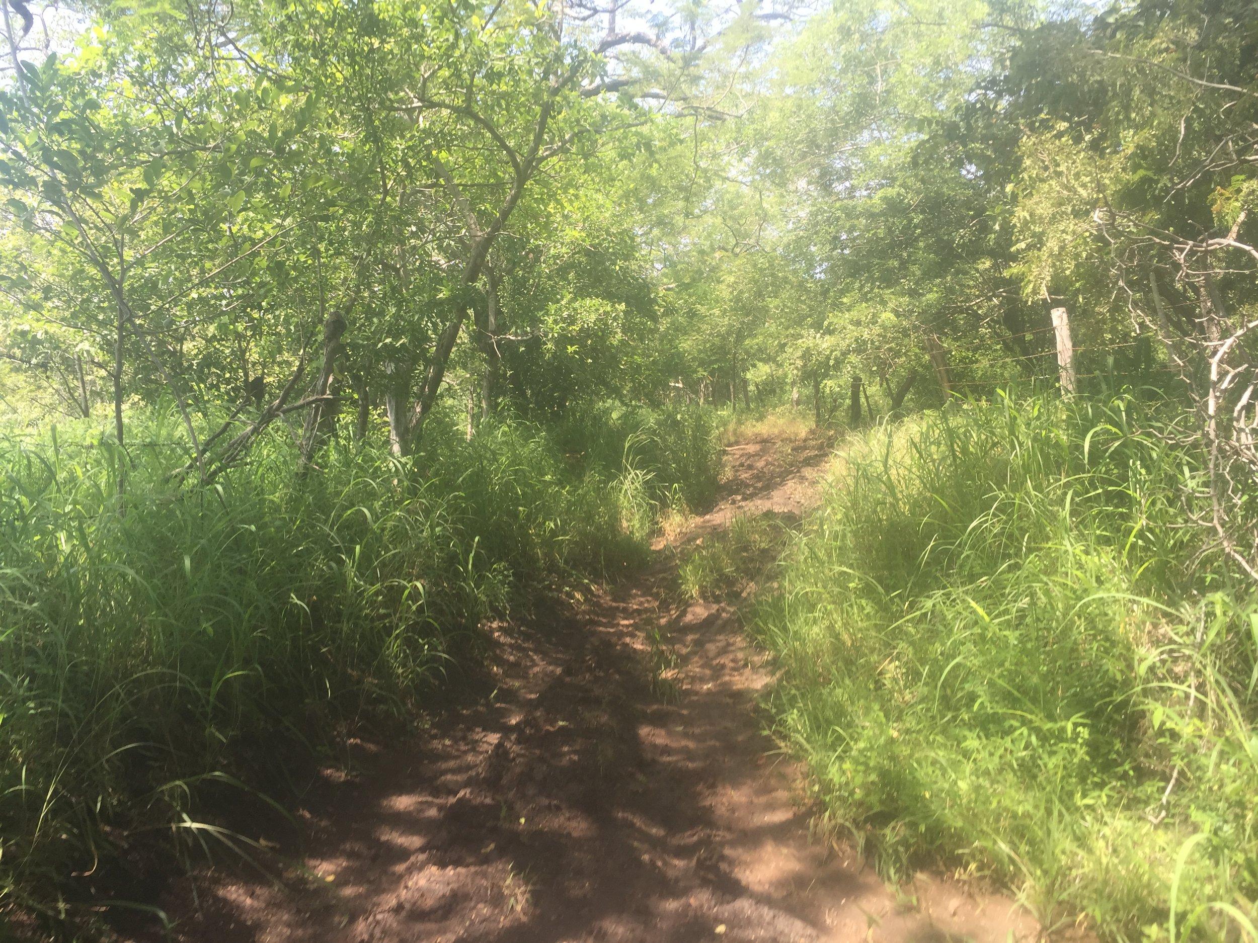 bike_trail_costa_rica