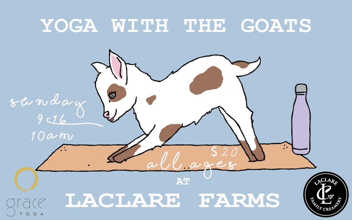 goat-yoga-1200x750.jpg