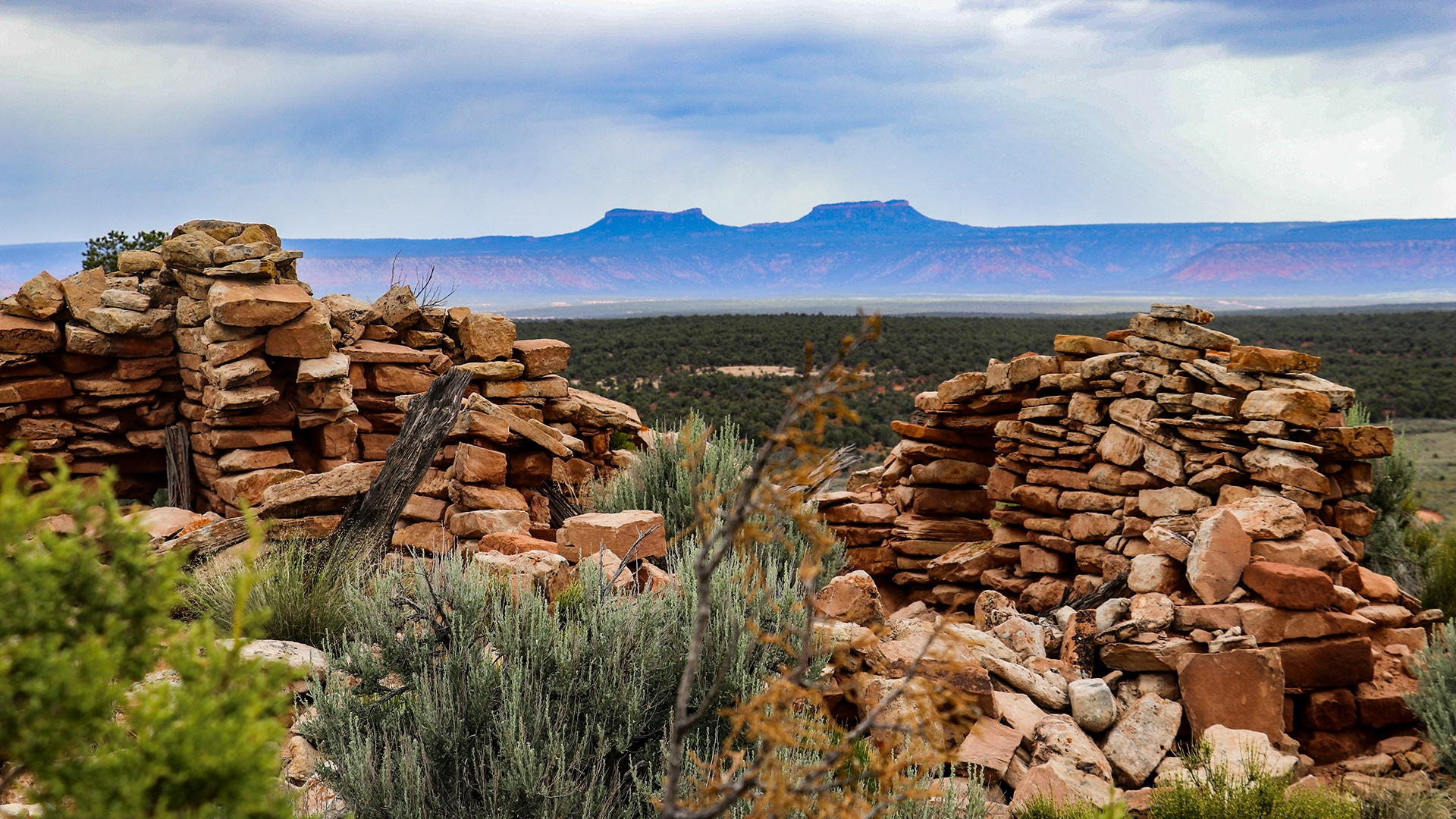 Above : Bear Ears National Monument (Photo credit: Tim Peterson)