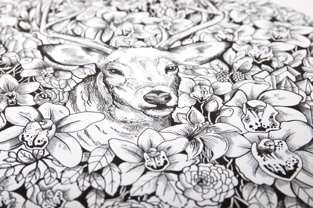 Illustration close up