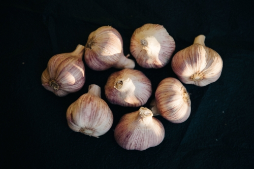 Garlic, a wonderful prebiotic food.