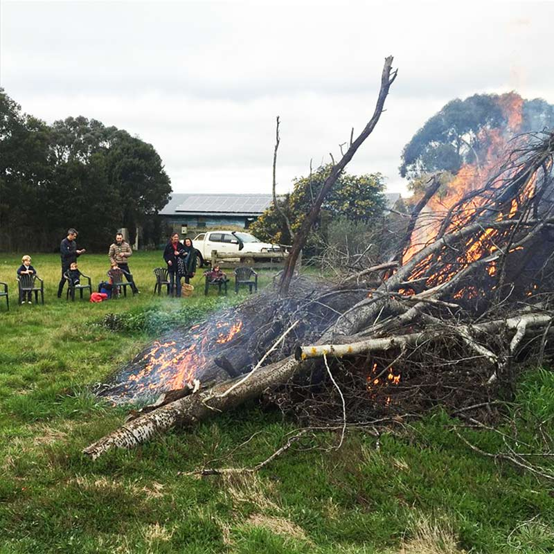 It's a good time of the year to light the bonfire and have a few locals over for a drink. We had some damaging winds in the Autumn and lost a few trees. We also removed a cypress hedge that was shading our veggie garden.