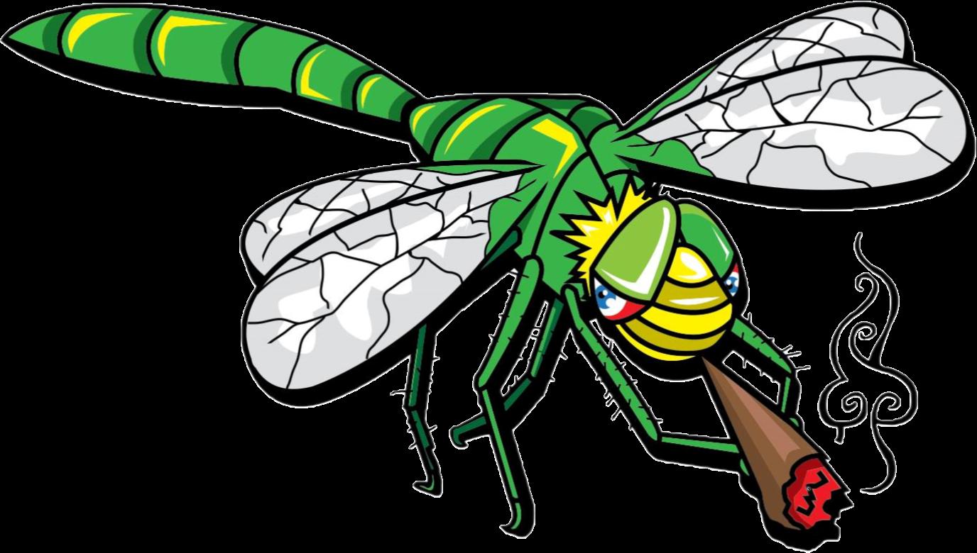 JB Dragonfly Transparent.png