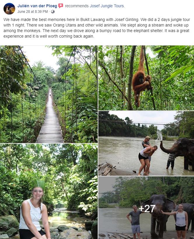 Jungle Tour Review