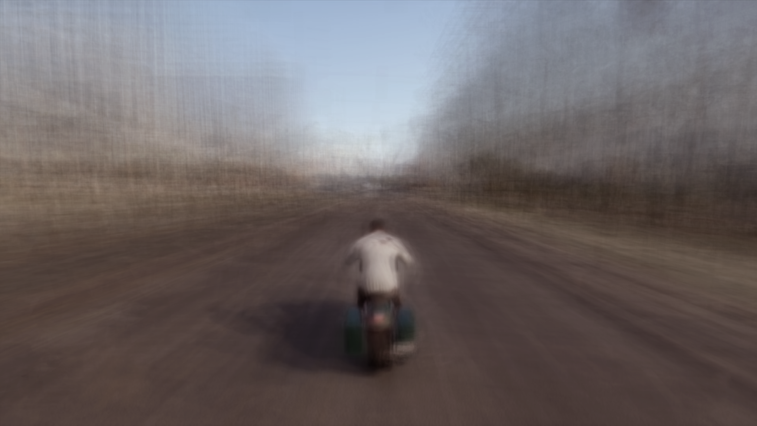 Biker On The Road (2017)