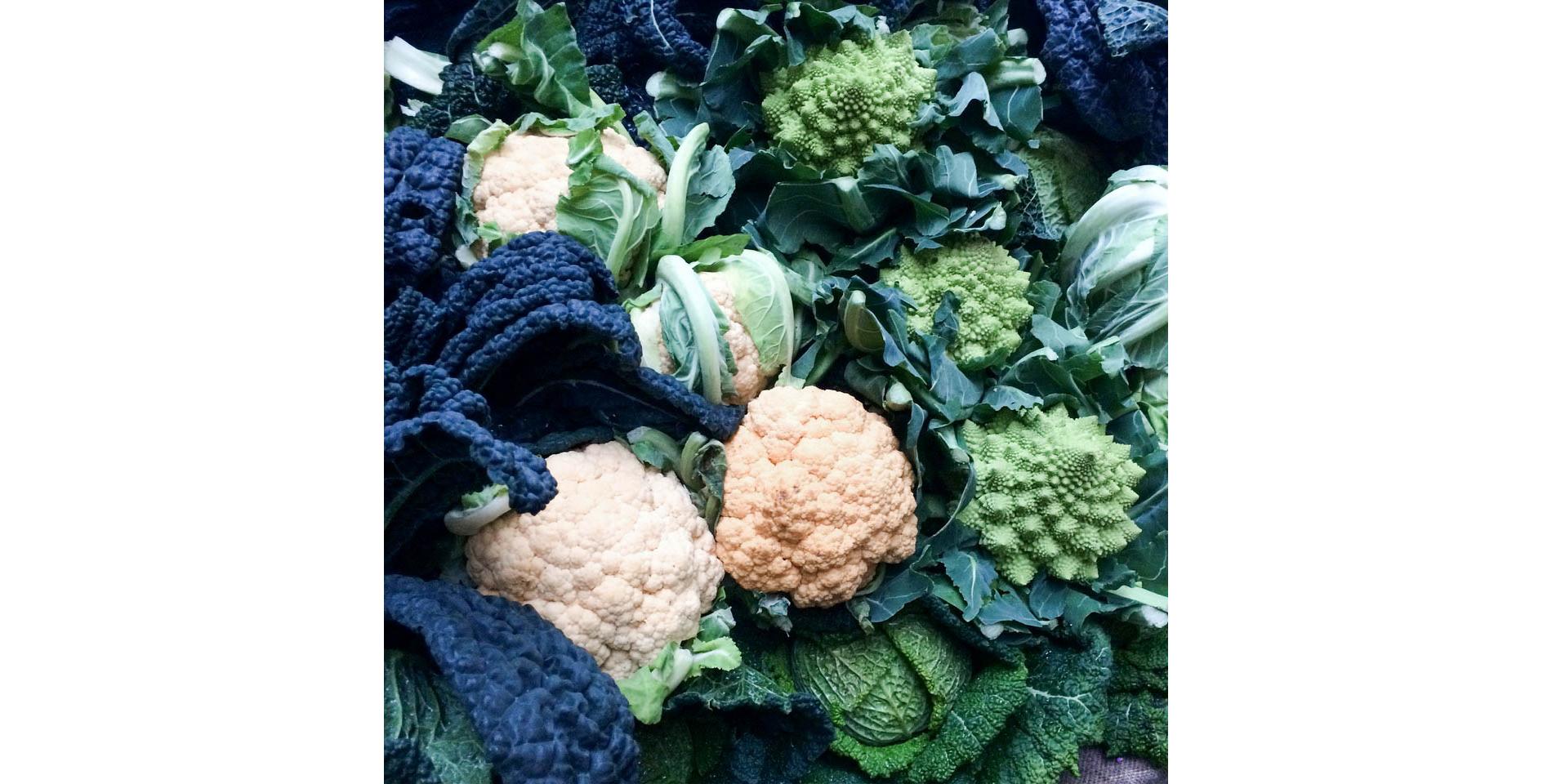 Immunity-Boosting Foods-for-Flu-Season-vegan-ethical-clothing-uncaptive.jpg