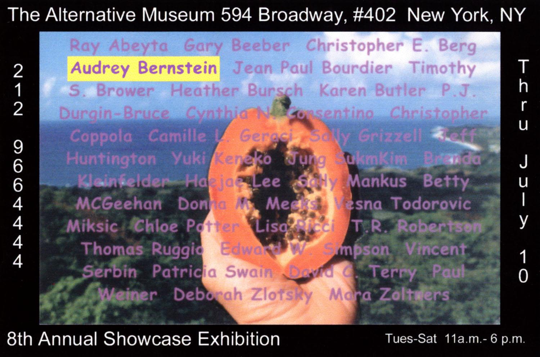 ABernstein_Promo_Alternative-Museum060.jpg