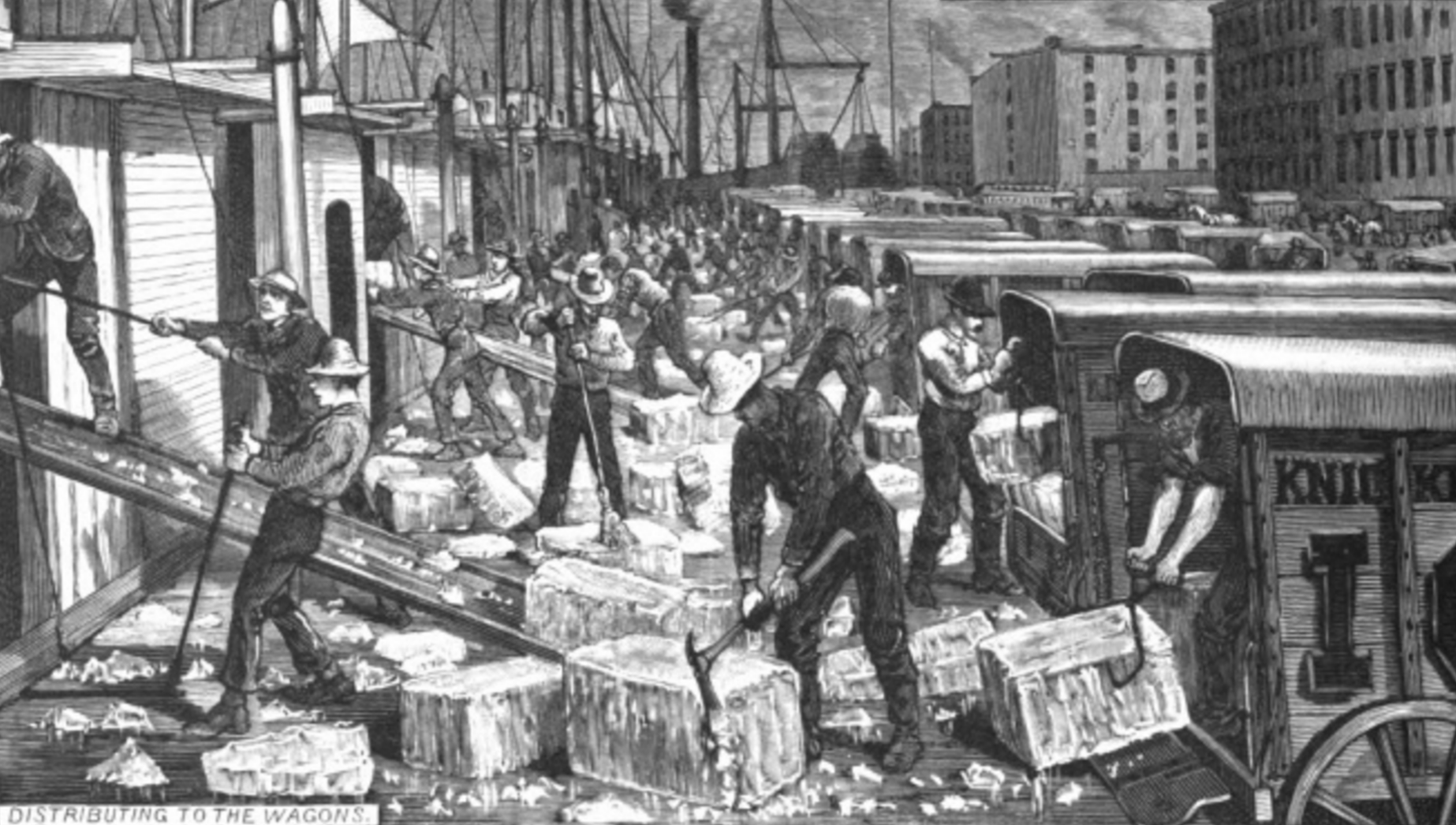 ICE TRADE IN NEW YORK.  HARPERS WEEKLY  ILLUSTRATION